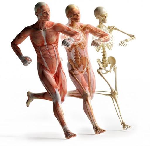Ošetření fascií - osteodynamika
